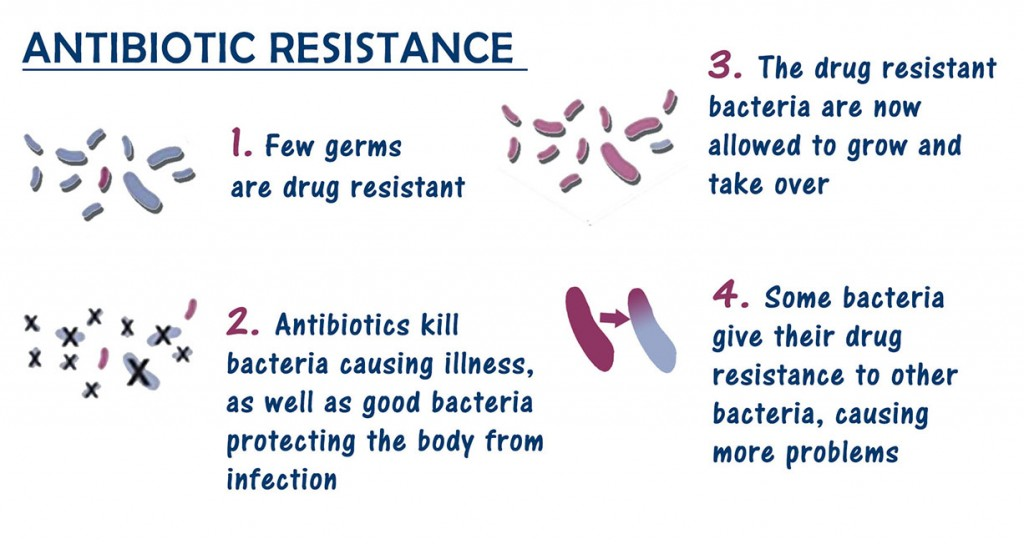 Environment Antibiotic resistance Rethinking healthcare norms