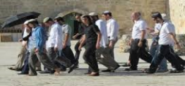 Palestine: Israeli settlers storm holy sites near Nablus