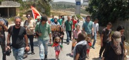 Palestine: One detained, many injured in Nabi Saleh protest