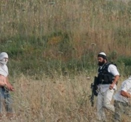 Palestine: Israeli settlers attack Palestinian cars