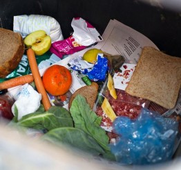 One third of world's food wasted each year, UN says