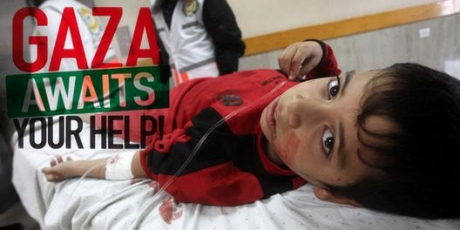 Palestine: Eight more Palestinians killed by Israeli missiles in Gaza