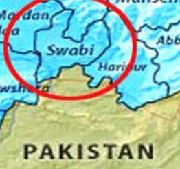 Pakistan: Five, including sister shot dead by brother over marriage of choice