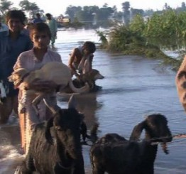 Pakistan:  Floods continue to play havoc as death toll reaches 200