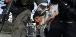 Palestine: Israeli forces kidnap 11 Palestinians in West Bank