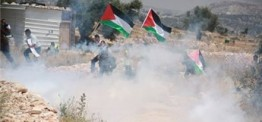 Palestine: Students tear-gassed near Bethlehem, 3 kidnapped by Israeli forces in Jerusalem rea