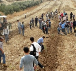 Palestine: Israeli military and settlers attack Palestinian workers in Nablus