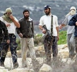 Palestine: Two Hebron children hospitalized after Israeli settlers' attack