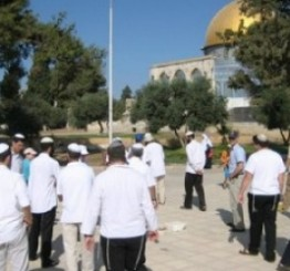 Palestine: Israeli settlers continue to raid Al-Aqsa Mosque compound