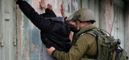 Palestine: Israeli soldiers kidnap eight Palestinians in West Bank