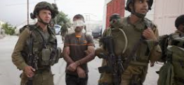 Palestine: Israeli soldiers kidnap seven Palestinians in West Bank