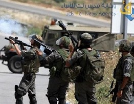 Palestine: Several Palestinians injured by Israeli soldiers in Beit Ummar
