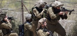 Palestine: 3 Palestinians injured as Israeli forces open fire in Gaza