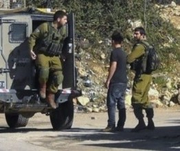 Palestine: Israeli raids in West Bank, numerous kidnappings
