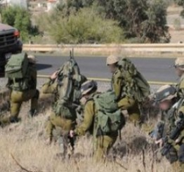 Palestine: Israeli army seizes Palestinian agricultural equipment near Tubas
