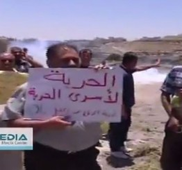 Palestine: Injuries reported as Israeli army attacks nonviolent protest in Hebron