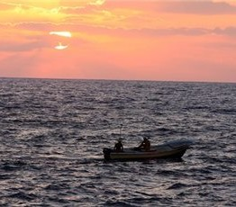 Palestine: Gaza fisherman shot & injured by Israeli forces