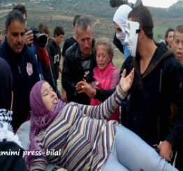 Palestine: Palestinians targeted with live fire amid state of hate attacks