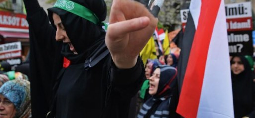Turkey: Thousands of Turks protest against Egypt' mass death penalties